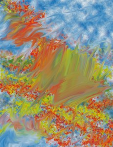abstract fine art image
