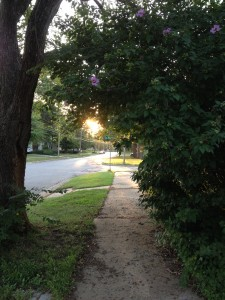 The sun rises over an ordinary street.
