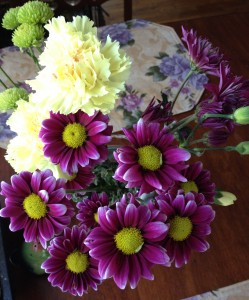 asters and carnations